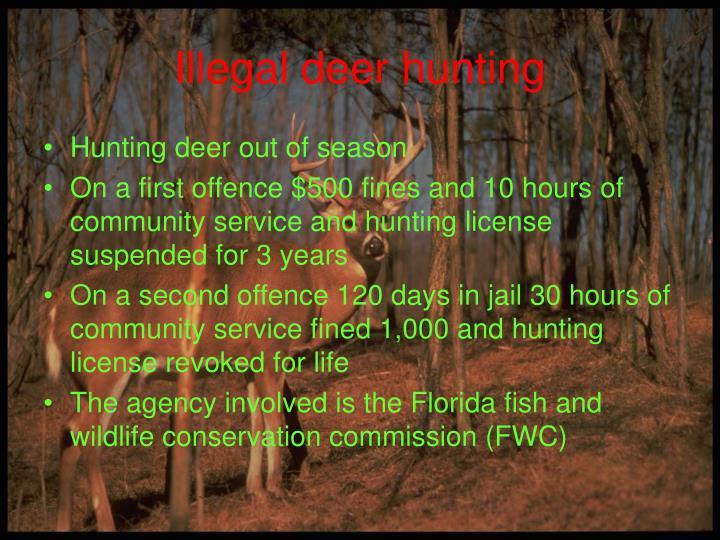 Illegal deer hunting