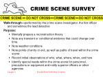 crime scene survey