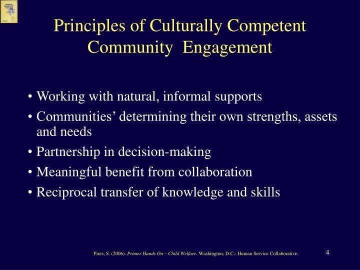 Principles of Culturally Competent