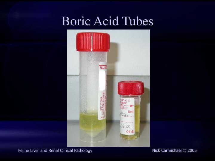 Boric Acid Tubes