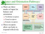balance and orientation pathways