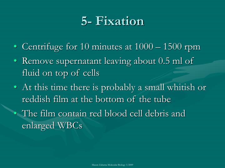 5- Fixation