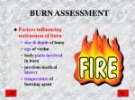 burn assessment
