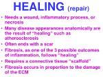 healing repair