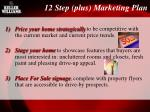 12 step plus marketing plan