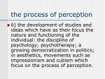 the process of perception