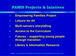 pamis projects iniatives