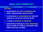 what does pamis do1