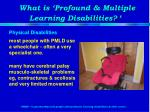 what is profound multiple learning disabilities1