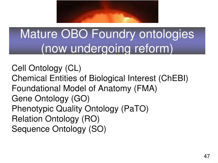 Mature OBO Foundry ontologies (now undergoing reform)