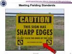 meeting fielding standards