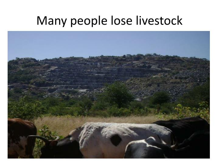 Many people lose livestock