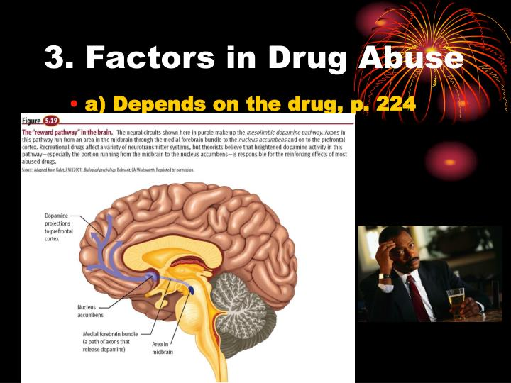 3. Factors in Drug Abuse