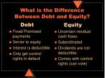 what is the difference between debt and equity