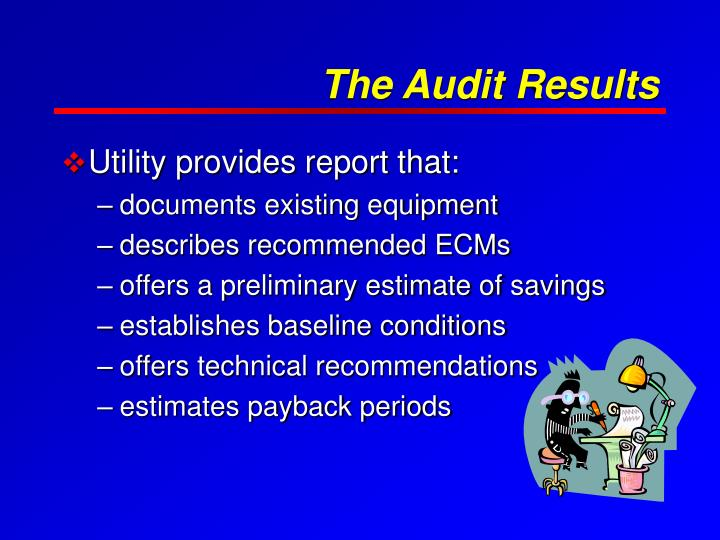 The Audit Results
