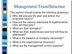 management team structure