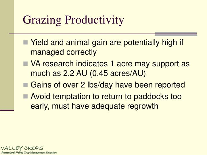 Grazing Productivity