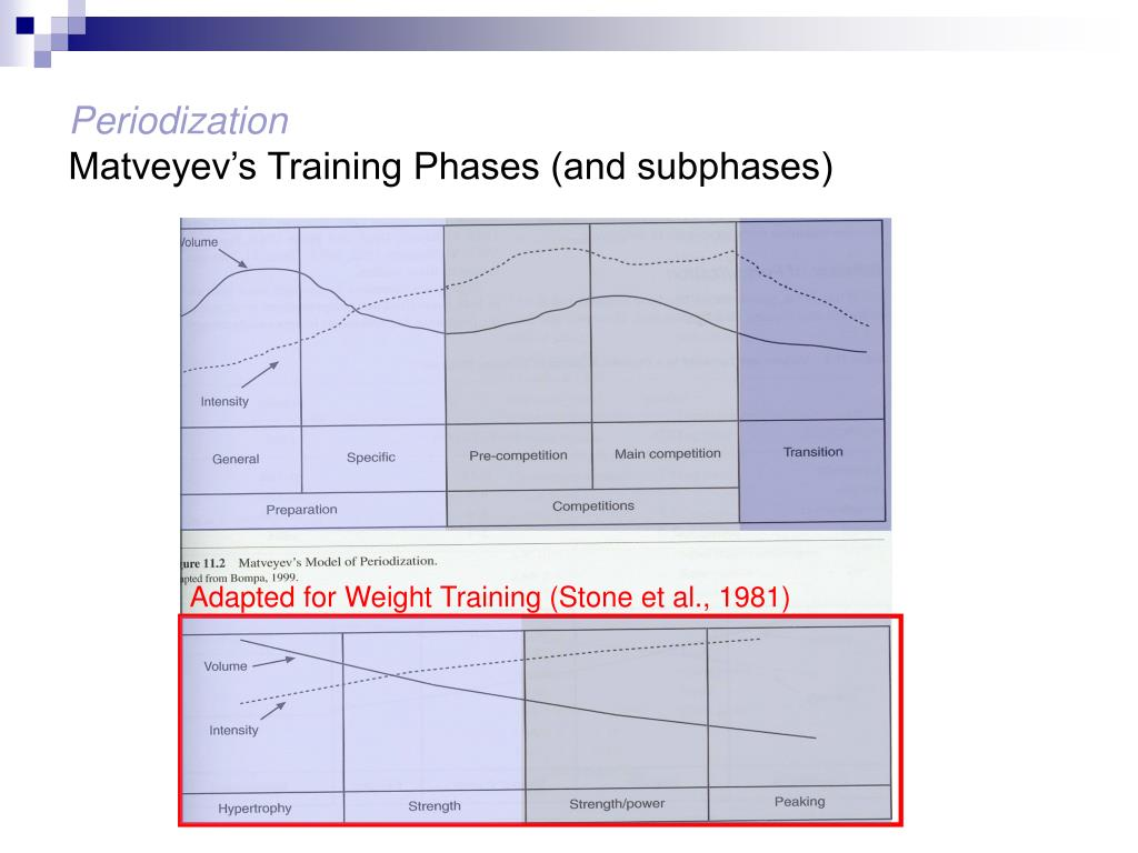 PPT - Concurrent Training & Periodization PowerPoint