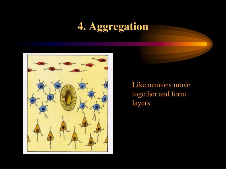 4. Aggregation