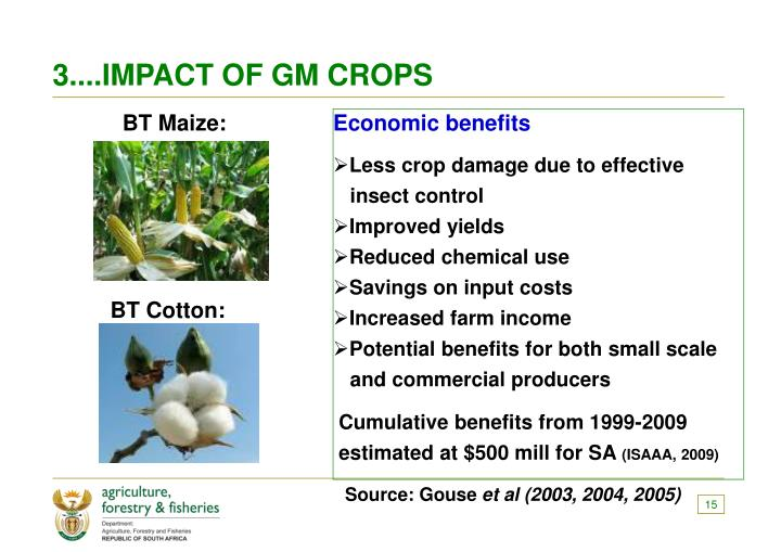 3....IMPACT OF GM CROPS