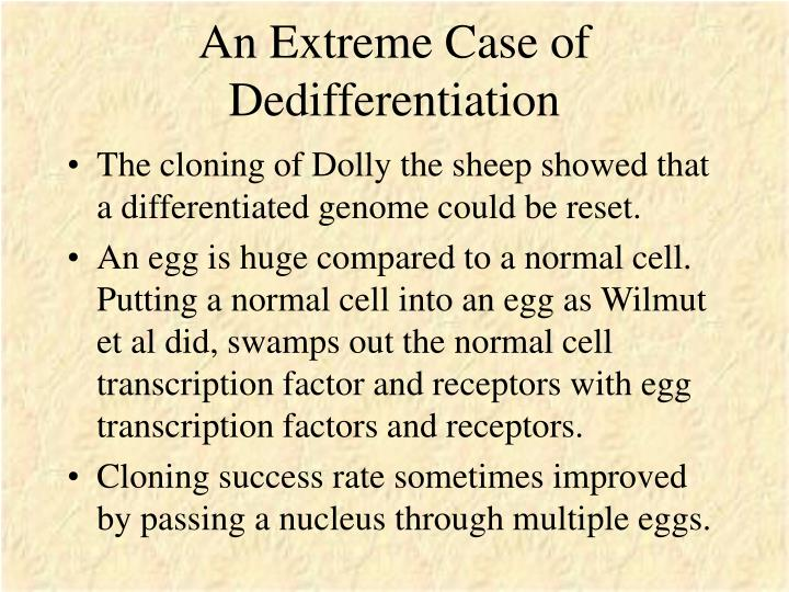 An Extreme Case of Dedifferentiation