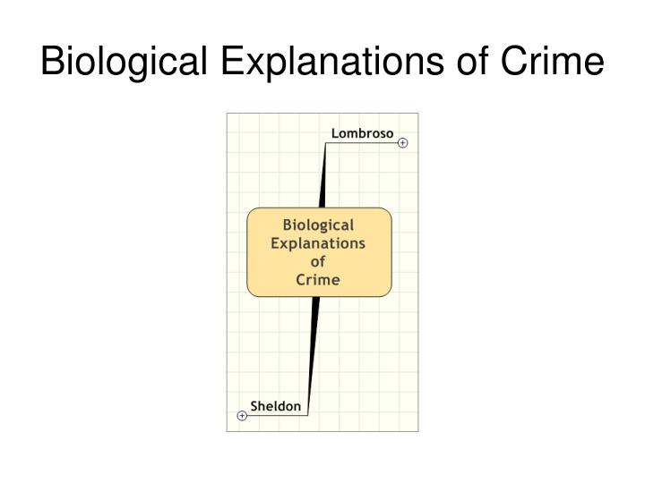 explanations of crime assess the usefulness of marxist explanations for our understanding of crime and deviance marxism is a political and economic theory devised by karl marx and fredrich engels this is a theory in which centralises on the inevitability that the oppressive bourgeoisie under capitalism will be toppled by the proletariat to achieve a socialist.