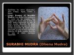 surabhi mudra dhenu mudra