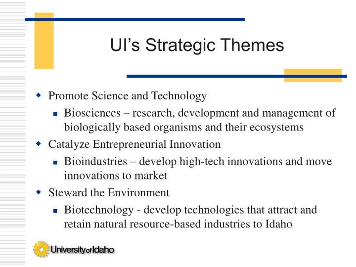 UI's Strategic Themes