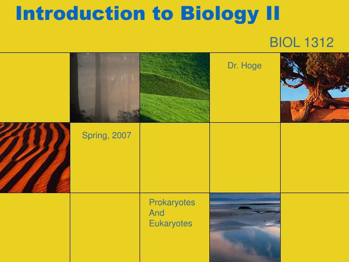 introduction to biology ii n.