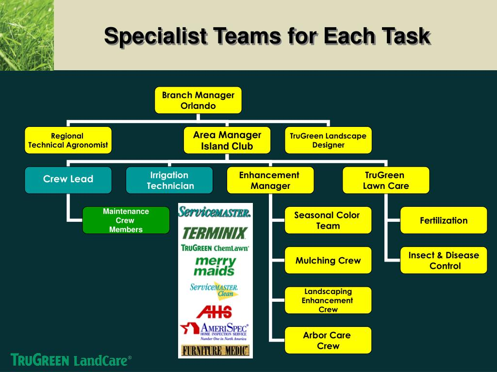 Specialist Teams for Each Task