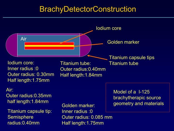 BrachyDetectorConstruction