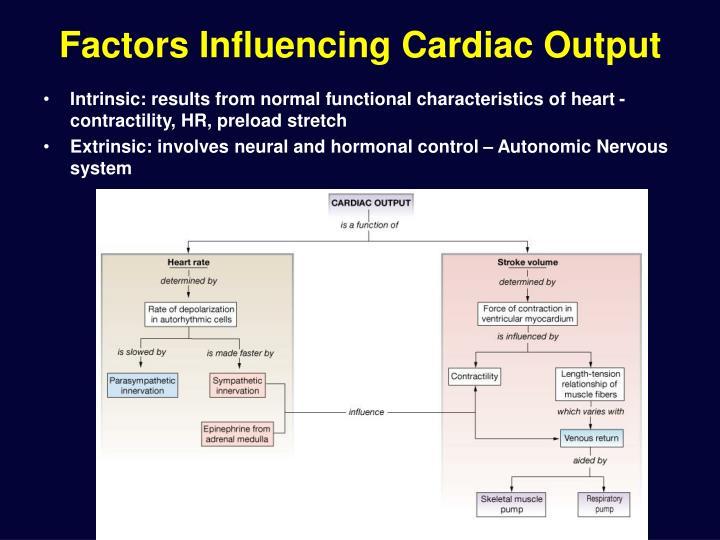 Factors Influencing Cardiac Output