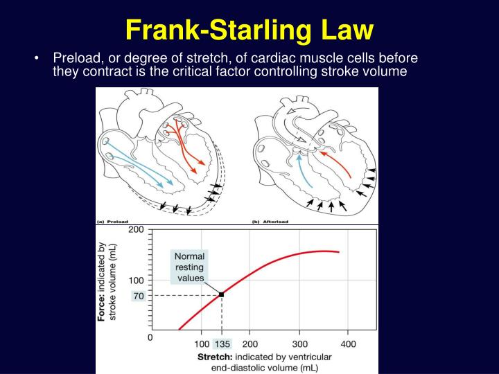 Frank-Starling Law