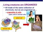 living creatures are organized1