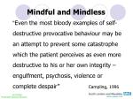 mindful and mindless1