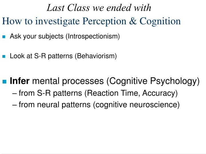 how to investigate perception cognition n.
