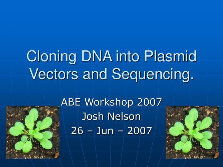 cloning dna into plasmid vectors and sequencing