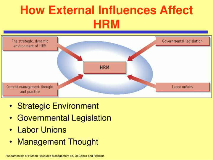 effect of human resorce management on Implementation of human resource management (hrm) practices is needed to improve the situation for a depleted and overstretched health workforce, and patient outcomes [10, 13-18] the minority of included studies focused on single hrm practices they mostly found positive effects on performance.