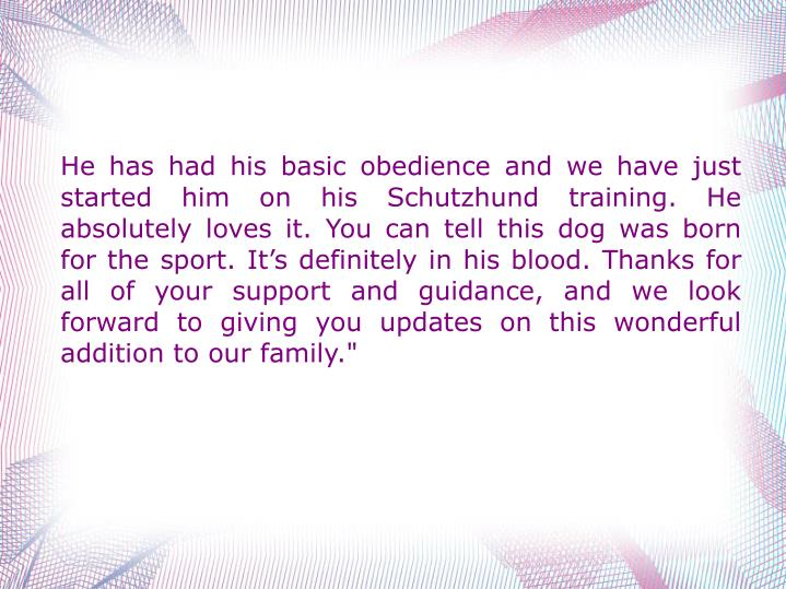 """He has had his basic obedience and we have just started him on his Schutzhund training. He absolutely loves it. You can tell this dog was born for the sport. It's definitely in his blood. Thanks for all of your support and guidance, and we look forward to giving you updates on this wonderful addition to our family."""""""