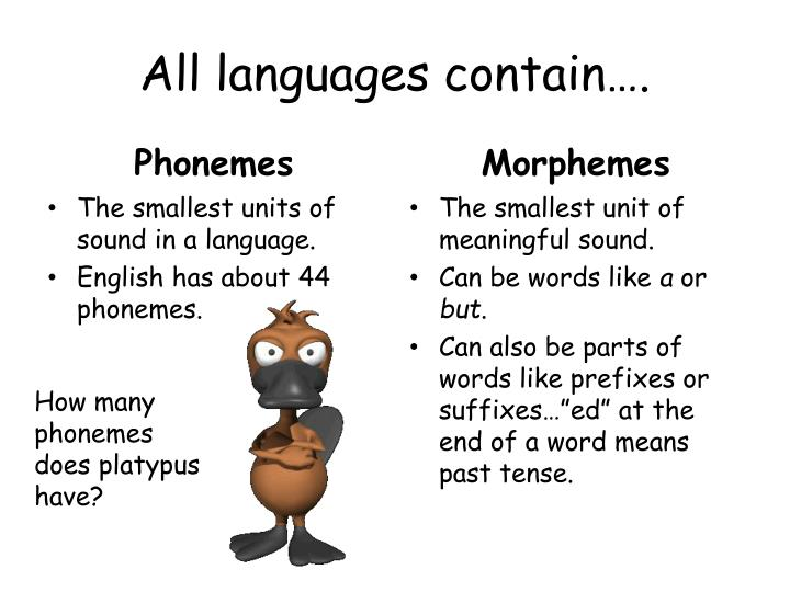 All languages contain