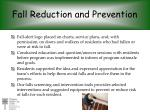 fall reduction and prevention2