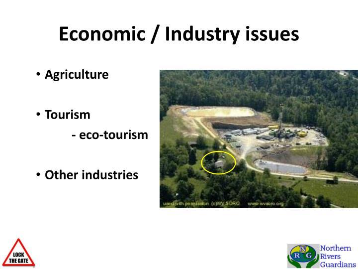 Economic / Industry issues