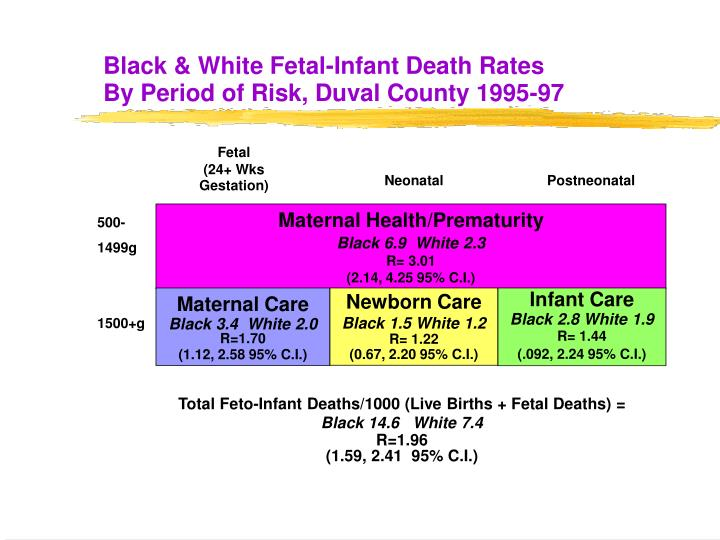 Black & White Fetal-Infant Death Rates