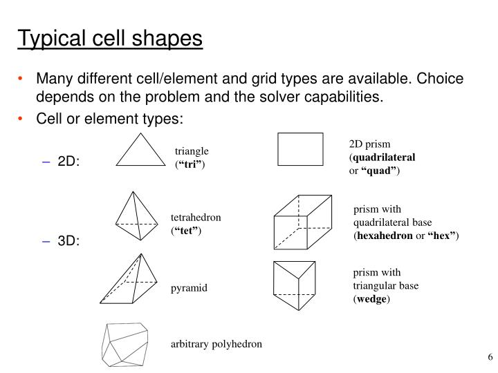 Typical cell shapes