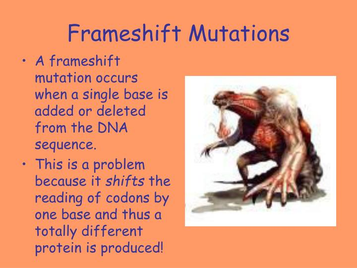 Frameshift Mutations