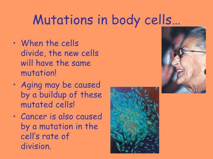 Mutations in body cells…