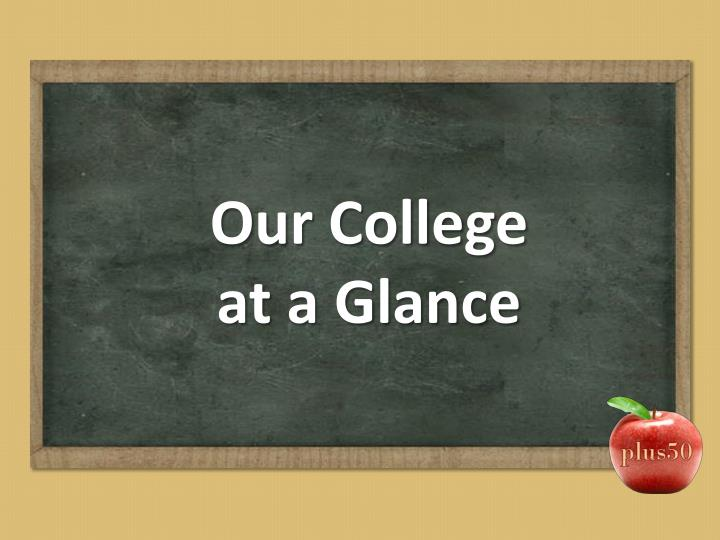 Our college at a glance