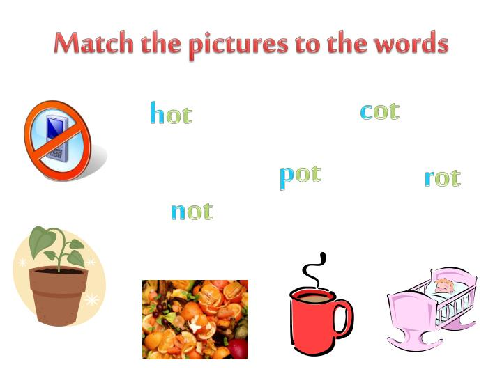 Match the pictures to the words