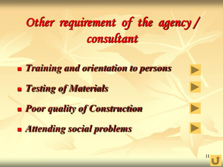 Other  requirement  of  the  agency / consultant
