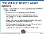 peer and other recovery support services